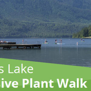 Invasive Plant Walk - Cultus Lake