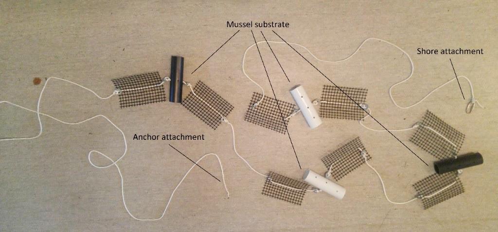 substrate sampler